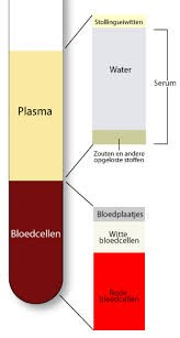 nuchter zijn voor bloedonderzoek